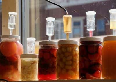 fermentationfest2015_11