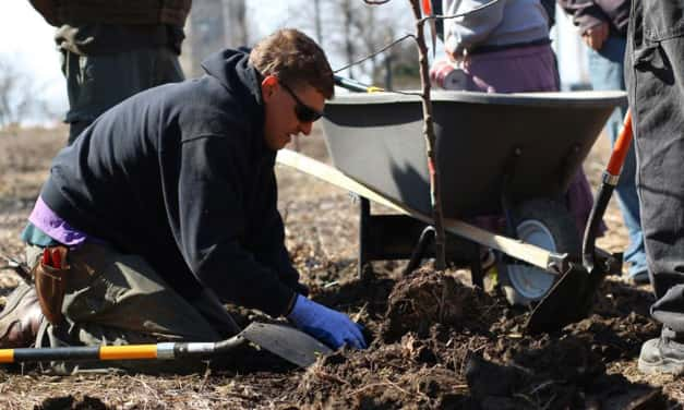 Victory Garden Initiative Celebrates Urban Orchards