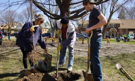 Victory Garden Initiative spreads edible abundance with annual orchard contest