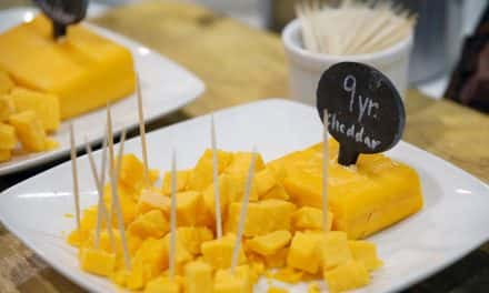 Flavors of Fall coming to Wehr Nature Center with cheese tasting