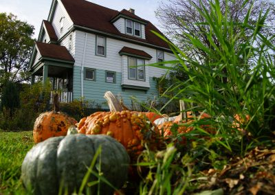 102916_pumpkinsnorth_0042