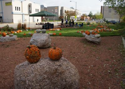 102916_pumpkinsnorth_0165