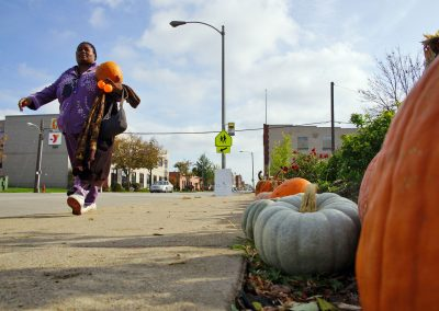 102916_pumpkinsnorth_0392