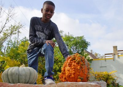 102916_pumpkinsnorth_0455