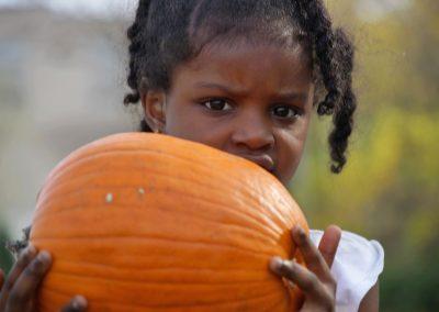 102916_pumpkinsnorth_0531
