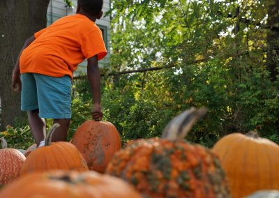 102916_pumpkinsnorth_0542
