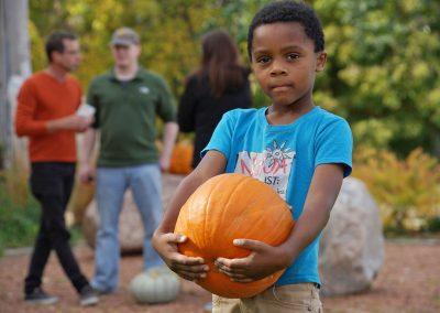102916_pumpkinsnorth_0756