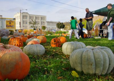102916_pumpkinsnorth_1017