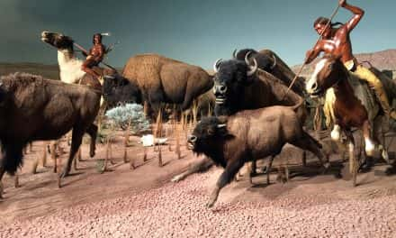 Milwaukee Public Museum explores plans to relocate downtown