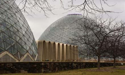 Open Letter on Domes status from Park Director