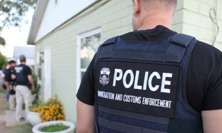 PSA: Immigration raids and your legal rights