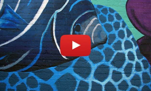 Video: Time lapse of Penfield Mural