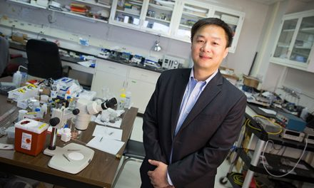 Junhong Chen: Making a global impact with local research