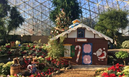Kooky Cooky House at Mitchell Park Domes this year due Discovery World expansion