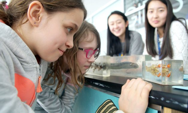 """""""Love Your Great Lakes"""" inspires next generation of freshwater stewards"""