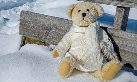 Animals hibernate in winter, people should not