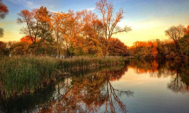 Restoration to begin on Humboldt Park's 125 year-old lagoon