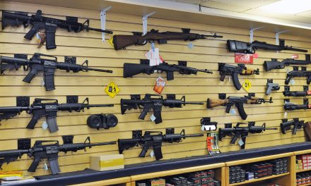 Ruling by Wisconsin appeals court reinstates lawsuit against online gun dealer