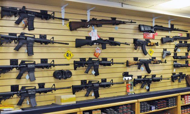 Ruling by Wisconsin appeals court reinstates lawsuit against online gun dealer