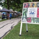 """Offering a """"Taste Of Place"""" puts Farmers Markets in competition over locally sourced food"""