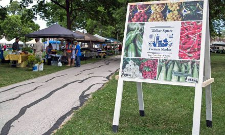 "Offering a ""Taste Of Place"" puts Farmers Markets in competition over locally sourced food"