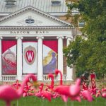 Apple wins appeal against University of Wisconsin over patent infringement case