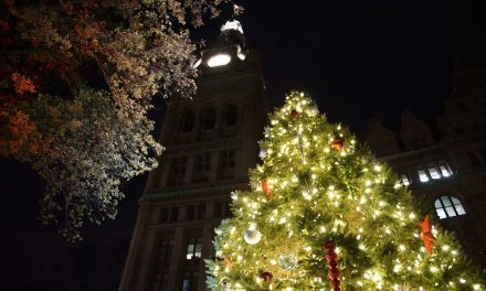 Milwaukee seeks nominations from residents for City Hall's 106th annual Christmas tree