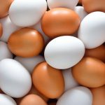 The Chicken or the Egg: How Changing Racist Attitudes Leads to Changing Racist Institutions