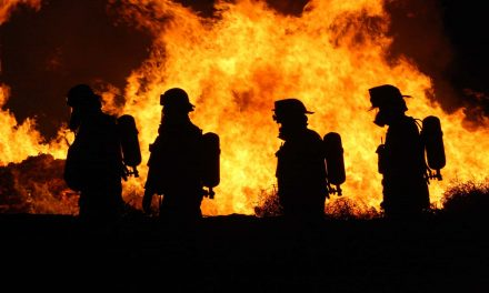 The institutional culture of firefighters offers a solution for law enforcement reform