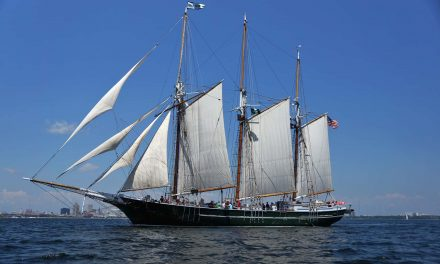 Lakefront icon in jeopardy: S/V Denis Sullivan's sailing days could be over without maintenance