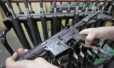 Gun Show Loophole: County officials oppose proposal that puts Milwaukee County in the firearms business