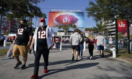 How many fans are too many during a pandemic: What baseball can learn from the NFL's 2020 COVID-19 season
