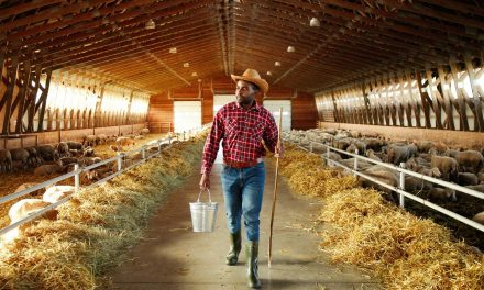 How debt relief for Black owned farms was blocked by a White farmer's claim of discrimination in Wisconsin