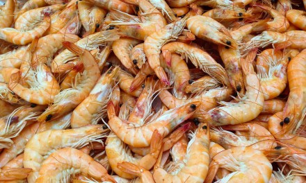 Do know where your shrimp comes from?