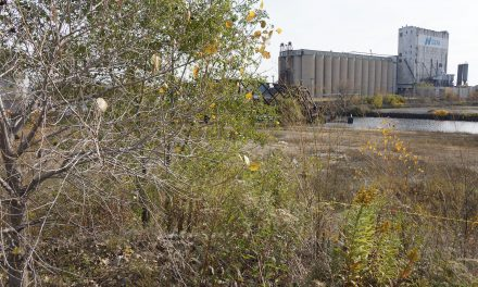 Harbor District vacant land eyed by nonprofits