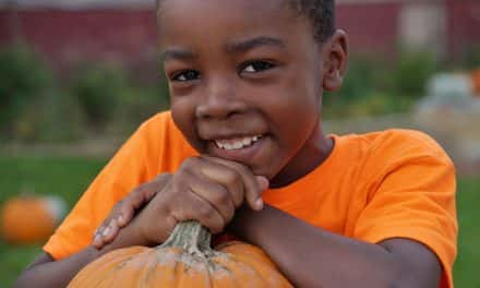 Pop-up pumpkin patch brings Halloween to North Avenue kids