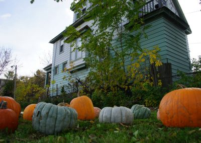 102916_pumpkinsnorth_0219