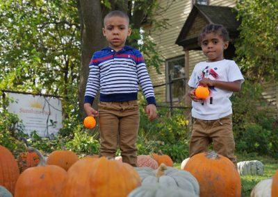 102916_pumpkinsnorth_0798