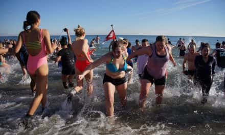 Balmy New Year's Day attracts massive 2017 Polar Bear Plunge