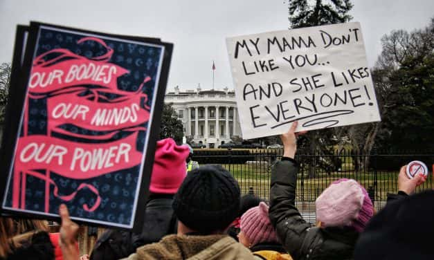 Karl Herschede: At the Women's March on DC
