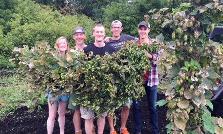 Beer Craft: A new cooperative of brewing barons