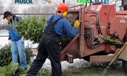 Mulchfest 2017 to save landfill space from holiday waste