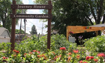 Journey House transforms Clarke Square with Community Garden