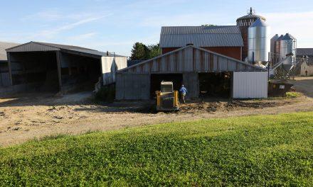 Trump policies impacting Dairyland with exodus of migrant farmers