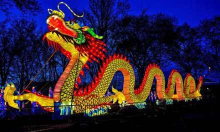 Chinese Lantern Festival returns to Boerner Botanical Gardens