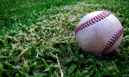 Tosa Baseball League renovates underutilized property to expand facilities