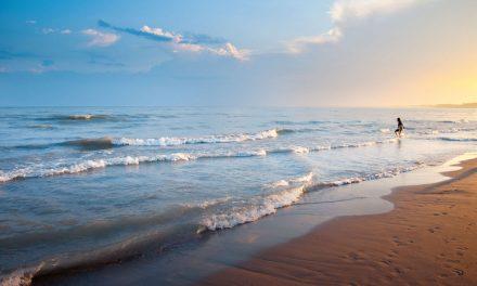 Full funding secured for Lake Michigan restoration initiative