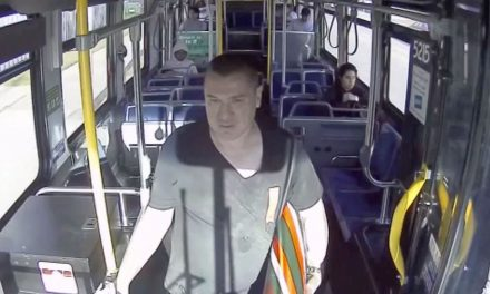 Thief in Walker's Point makes off with bus shelter artwork by using bus as getaway vehicle