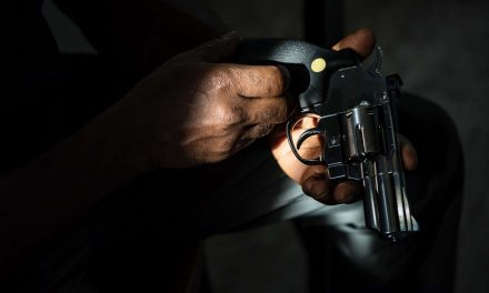 Second Amendment rights only protect white gun owners