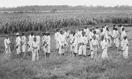 Anti-Immigration policies driving convict farm labor to levels not seen since Jim Crow era